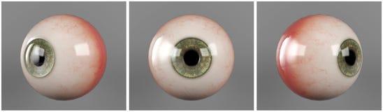 L'essere umano realistico eyeballs l'allievo verde dell'iride Fotografia Stock Libera da Diritti