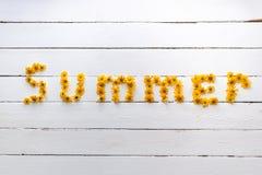 L'estate di parola si compone di bei wildflowers arancio Fotografia Stock