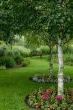 L'estate fiorisce intorno alla base di un albero fotografia stock