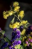 L'estate gialla, rosa, porpora fiorisce nel primo piano del mazzo nello scuro fotografia stock libera da diritti