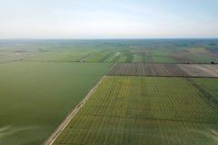 L'estate sistema l'antenna Vista verde aerea del campo Fild di agricoltura Fotografie Stock Libere da Diritti