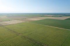L'estate sistema l'antenna Vista verde aerea del campo Fild di agricoltura Fotografie Stock