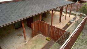 L'esterno della gabbia di pollo agli uccelli coltiva archivi video