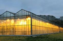 L'esterno della serra in sera Fotografia Stock Libera da Diritti