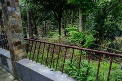 L'esterno verdeggiante delle piante ha dilapidato corridoio con handrial arrugginito Fotografie Stock