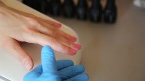 L'estetista manicure e dipinge le unghie del cliente Cura dell'unghia del manicure in un salone di bellezza video d archivio