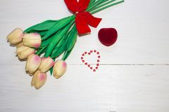 L'estremità del secchio sui tulipani dei fiori Fotografie Stock Libere da Diritti