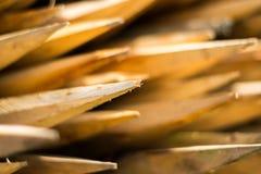 L'estremità volta il vento, legno, Fotografia Stock