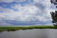 L'estuario allo sputo di Curonian nella regione di Kaliningrad Immagini Stock
