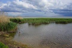 L'estuario allo sputo di Curonian nella regione di Kaliningrad Fotografia Stock