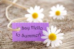L'etichetta porpora con la citazione di vita dice ciao all'estate ed a Marguerite Blossoms Fotografia Stock