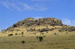 l'etiopia Regione del Amhara Facendo un'escursione nelle montagne fotografie stock