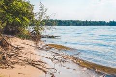 L'Europe de l'Est, Ukraine Île sauvage sur la rivière de Dnieper Photos stock