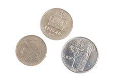 L'europeo anziano conia la valuta Fotografia Stock