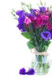 L'eustoma violet et mauve fleurit dans le vase en verre photographie stock libre de droits