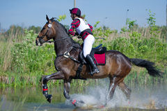 L'eventer de femme sur le cheval est exécuté dans le saut d'eau photos stock