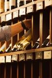 L'expert en matière de vinification choisissent le vin blanc d'élite dans la cave Photographie stock