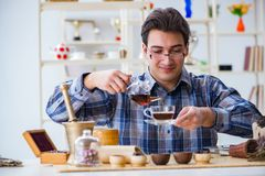 L'expert en matière professionnel de thé essayant de nouvelles infusions photographie stock libre de droits