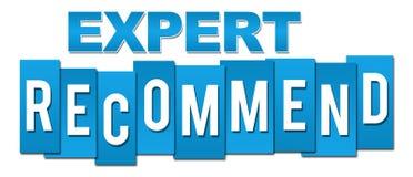 L'expert recommandent les rayures professionnelles bleues Image stock