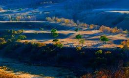 L'exposition de coucher de soleil sous le troupeau Images stock