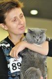 L'exposition des chats Photographie stock libre de droits