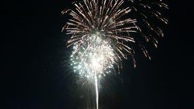 L'exposition gentille de freworks a illuminé le ciel nocturne clips vidéos