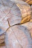 L'extrémité ronde de rondin a survécu à la surface criquée de conservation traditionnelle de la chaleur de sauna de matériaux de  photo stock