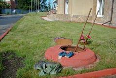 Ląg w trawie zdjęcia royalty free