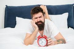 L?gger den sk?ggiga mannen f?r hipsteren i s?ng med ringklockan tid att up vaket D?rf?r du b?r vakna upp tidigt varje morgon h?ls royaltyfri foto