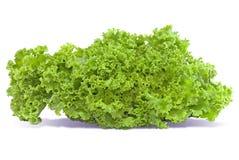 L?gume de salade, laitue d'isolement sur le fond blanc photographie stock