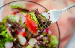 l?gume frais de tomate de salade de pr?paration de laitue de concombre photos stock