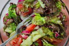 l?gume frais de tomate de salade de pr?paration de laitue de concombre image stock