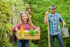 L?gumes de transplantation de jardinerie de cr?che Veggies d'usine Plantation de la saison Papa et fille de famille peu photographie stock