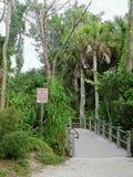 L'habitat dell'alligatore continua con prudenza segno Immagini Stock