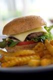 L'hamburger et les fritures se ferment  Photographie stock