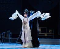 """L'harem imperiale di ballo lungo della manica o l'opera del serraglio-Jiangxi """"Red il  del pearl†fotografia stock libera da diritti"""