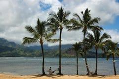 L'Hawai Immagini Stock Libere da Diritti