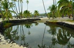 L'Hawai, grande isola Immagine Stock