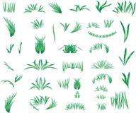 L'herbe Images libres de droits