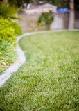 L'herbe a aménagé la cour en parc Photos libres de droits