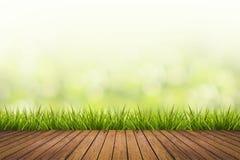 L'herbe avec le vert a brouillé le fond et le plancher en bois Photo libre de droits