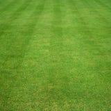 L'herbe a coupé avec des pistes Images stock