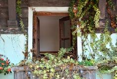 L'herbe couvre la fenêtre en bois de l'architecture âgée Photos libres de droits