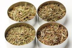 L'Herbe DE de Provence Royalty-vrije Stock Fotografie