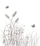L'herbe de vecteur silhouette le fond Photo libre de droits