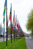 L'herbe différente de manière de route de nation de beaucoup de drapeaux de rue de l'Europe de membres des syndicats de pays de b photographie stock