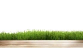 L'herbe en bois de la terre 3d d'herbe verte rendent Photos stock