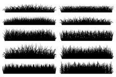 L'herbe encadre la silhouette sur le fond blanc Photos libres de droits