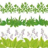 L'herbe et les fleurs, ont placé sans couture Photographie stock libre de droits