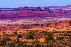 L'herbe jaune débarque le parc national Moab Utah de voûtes rouges de canyon Photographie stock libre de droits